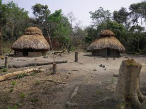 A village in the jungle of Sierra Leone